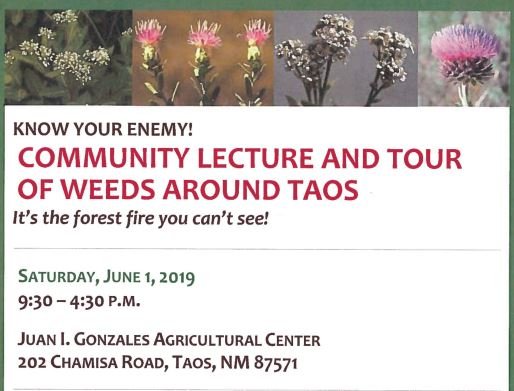Community Lecture and Tour of Weeds Around Taos 03-29-19 (2)